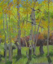 autumn, Boulder Mountain, Utah, Scotty Mitchell