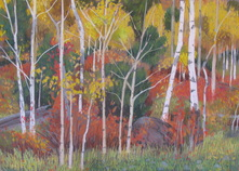Fall color, pastel, plein air, Scotty Mitchell